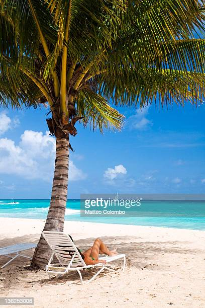 woman relaxing under palm tree - bridgetown barbados stock photos and pictures