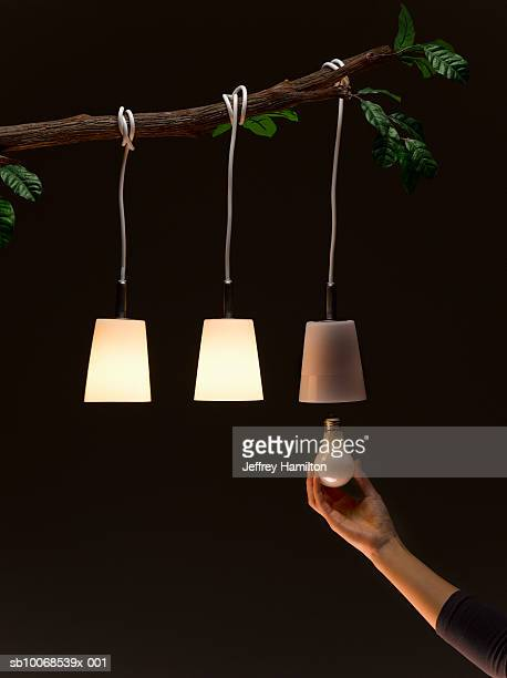 Woman replacing light bulb hanging on tree
