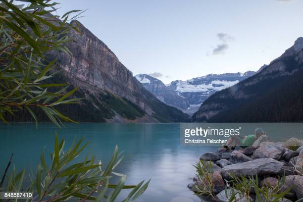 woman resting on boulders at lake louise, banff national park, canada - christina felschen stock pictures, royalty-free photos & images