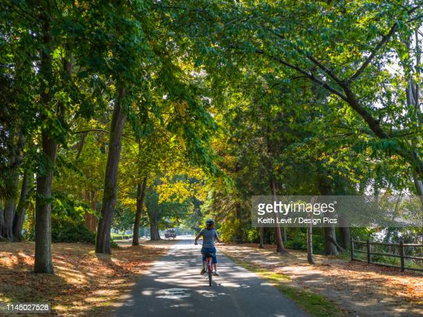 a woman rides a bike along stanley park seawall trail - seawall stock pictures, royalty-free photos & images