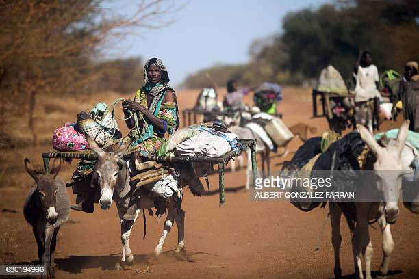 TOPSHOT A woman rides a donkey as nomad families from the Misseryia area in Abyei region migrate from north on December 18 2016 The beginning of the...
