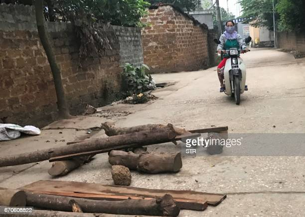 A woman rides a motorcycle on an alley with loose rocks and logs placed by villagers inside the Dong Tam commune in My Duc district on the outskirts...
