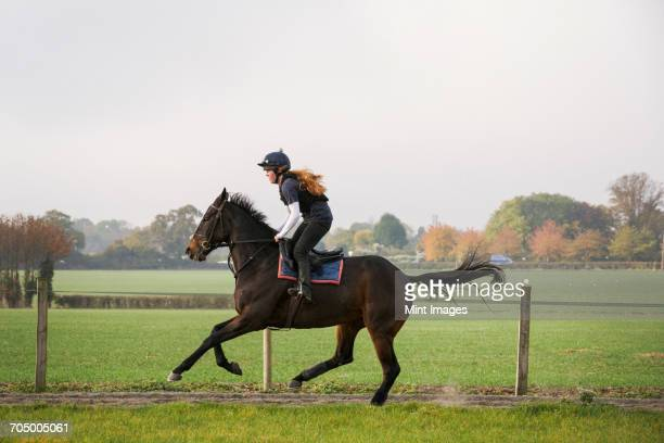 Woman riding a bay horse along a track. Side view.