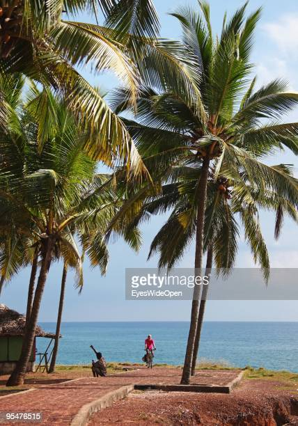 Woman riding a bicycle through the palm trees along the indian ocean at Varkala on December 16 2009 in Varkala near Trivandrum Kerala India