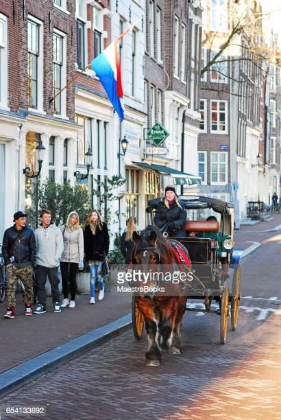 vrouw rijden van een paard en wagen taxi met toeristen. - koets stockfoto's en -beelden