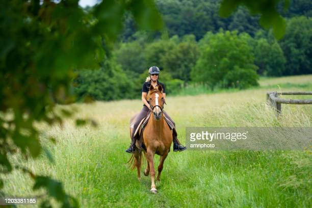 woman riding attentive horse outdoors over meadow - horseback riding stock pictures, royalty-free photos & images