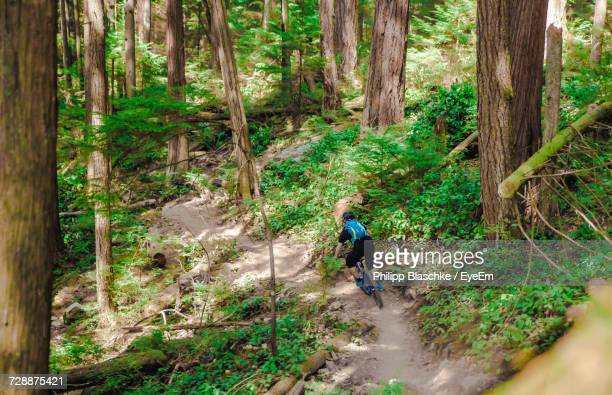 woman riding bicycle in forest - north shore stock photos and pictures