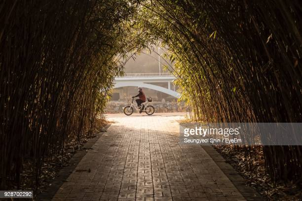 Woman Riding Bicycle On Footpath