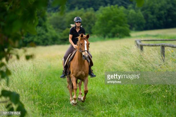 woman riding horse in grassland - riding hat stock pictures, royalty-free photos & images