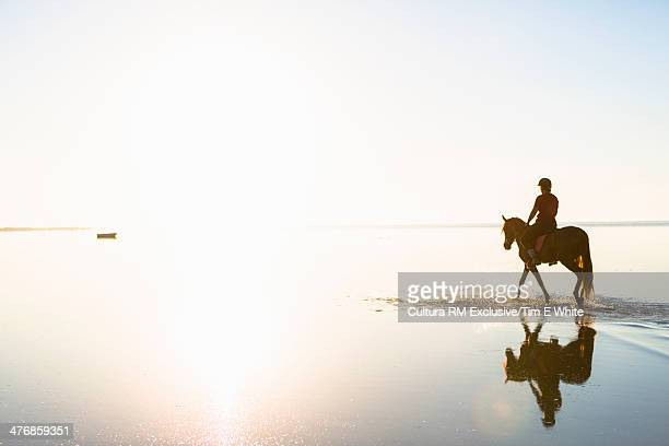 Woman riding horse in shallow water at sunset, Djerba, Tunisia