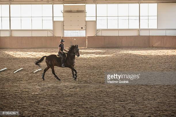 woman riding horse in training stable - riding stock pictures, royalty-free photos & images