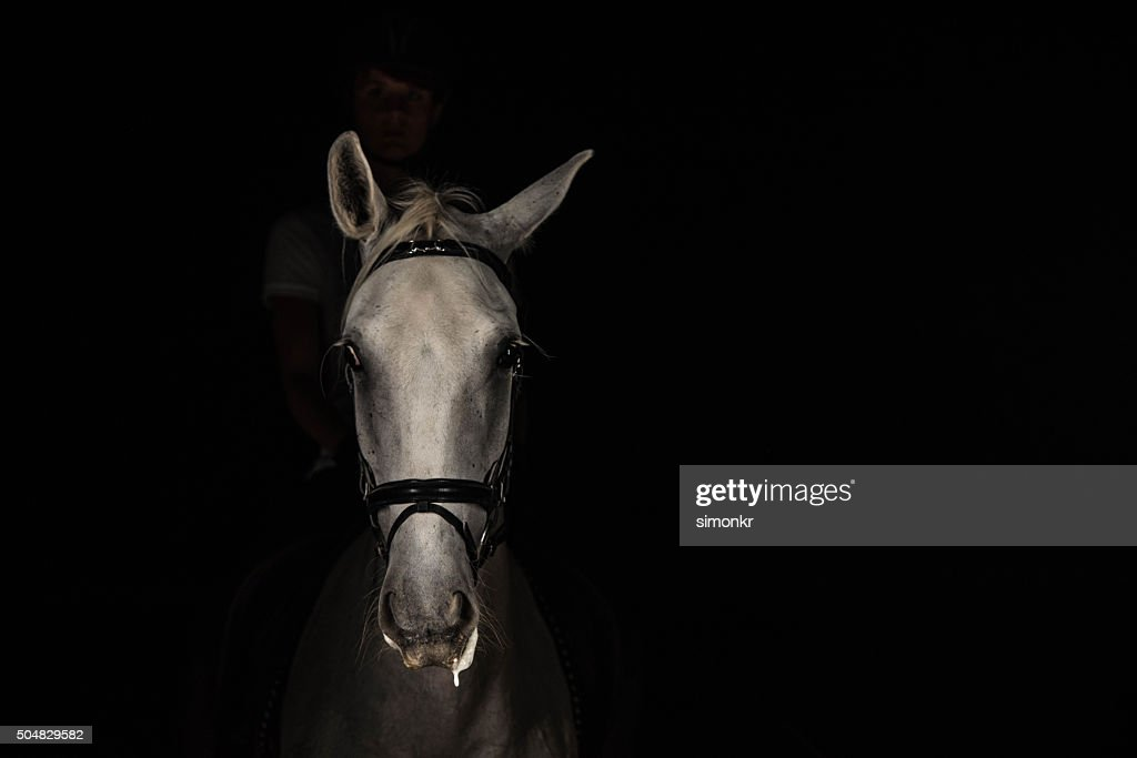 Woman riding horse : Stock Photo