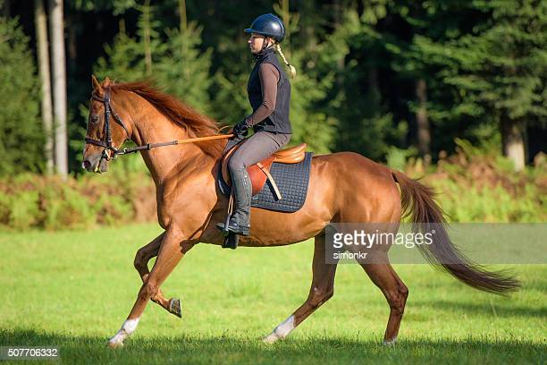 woman riding horse - riding hat stock pictures, royalty-free photos & images