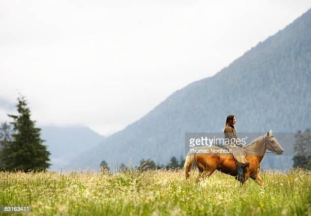 woman riding horse through field.  - recreational horseback riding stock pictures, royalty-free photos & images