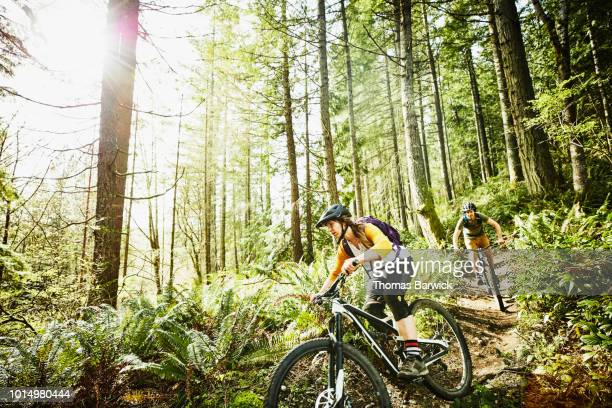 woman riding mountain bike down trail in forest with friend - pedal pushers stock pictures, royalty-free photos & images