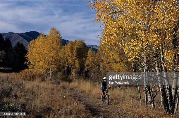 woman riding mountain bike on forest track - human powered vehicle fotografías e imágenes de stock