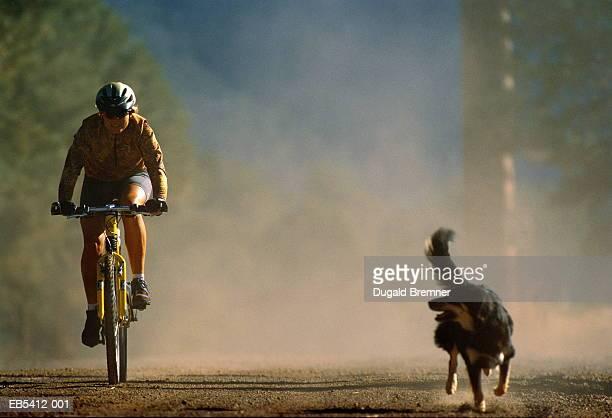 Woman riding mountain bike on trail, dog running alongside