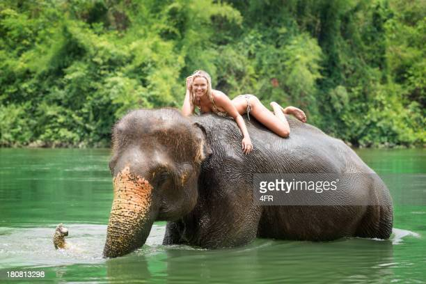 woman riding on an elephant, tropical rain forest - big nose stock photos and pictures