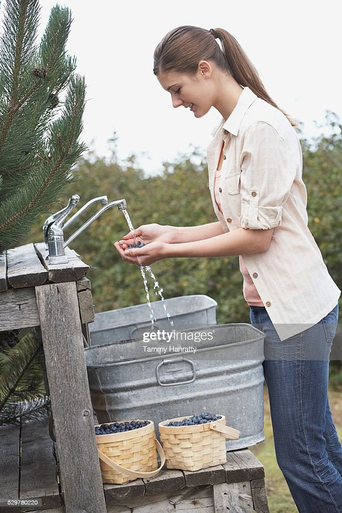 Woman rinsing blueberries : Foto de stock