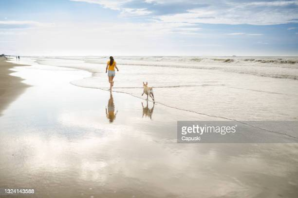 mulher correndo na praia com seu cachorro - mulheres de idade mediana - fotografias e filmes do acervo