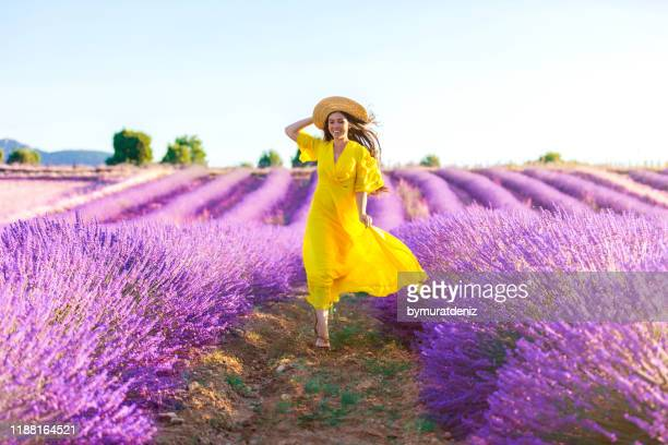 woman running on a lavender field - yellow dress stock pictures, royalty-free photos & images