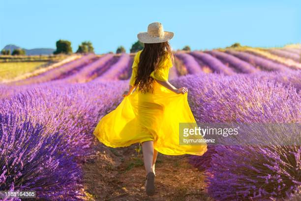 woman running on lavender field - yellow dress stock pictures, royalty-free photos & images