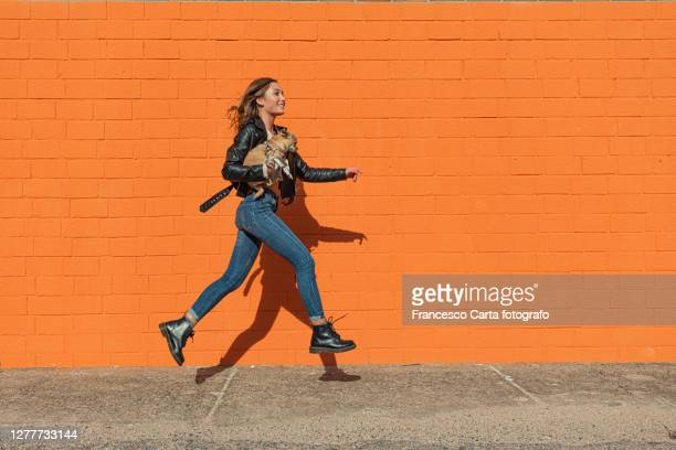 woman running with her chihuahua dog i - young animal stock pictures, royalty-free photos & images