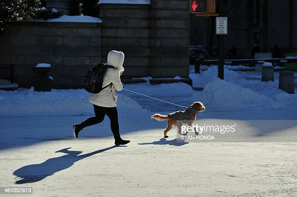 A woman runs her dog through Central Park in frigid temperatures January 22 2014 in New York The northeastern US shivered amid heavy snowfall and far...