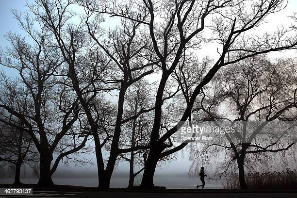 Woman runs through Prospect Park in Brooklyn on a morning with dense fog on January 15, 2014 in New York City. Travel delays were reported for...