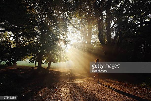 Woman runs through the early morning mist on Hampstead Heath on September 30, 2011 in London, England. Much of the UK is enjoying a spell of...