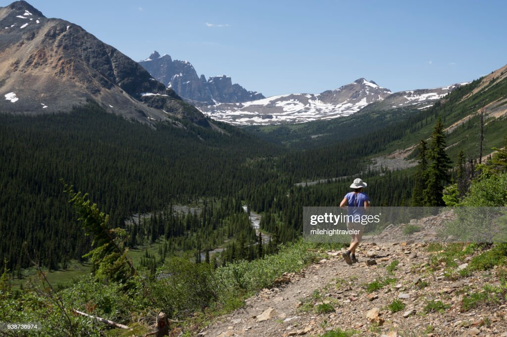 Woman runs Tonquin Valley Trail Jasper National Park mountains Alberta : Stock Photo