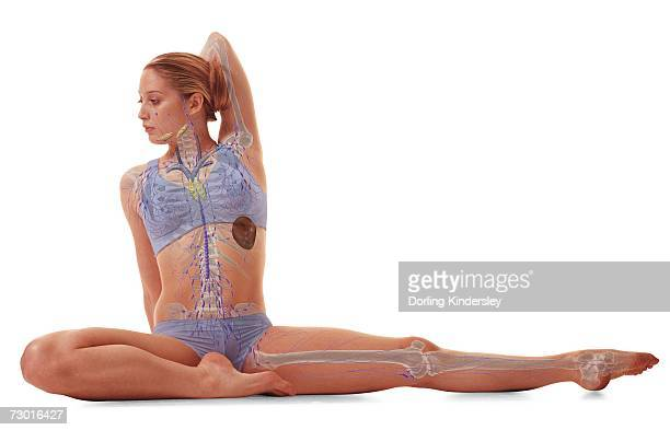 Woman sat with leg outstretched to one side, other leg folded in, arm behind head, skeleton, lymphatic system illustration overlay.