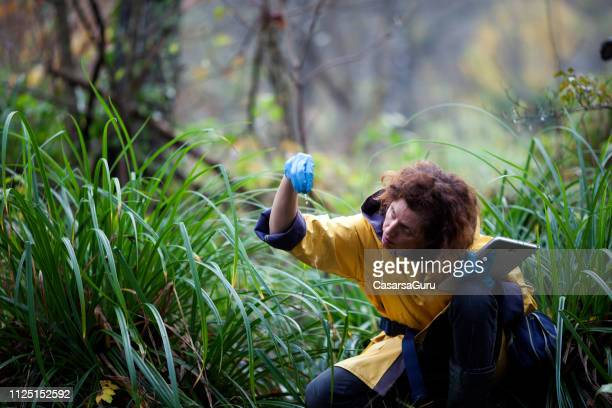 woman scientist ecologist taking samples of the soil and groundwater - ecosystem stock pictures, royalty-free photos & images