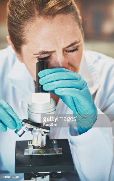 woman scientist looks through microscope at blood sample - human tissue stock photos and pictures