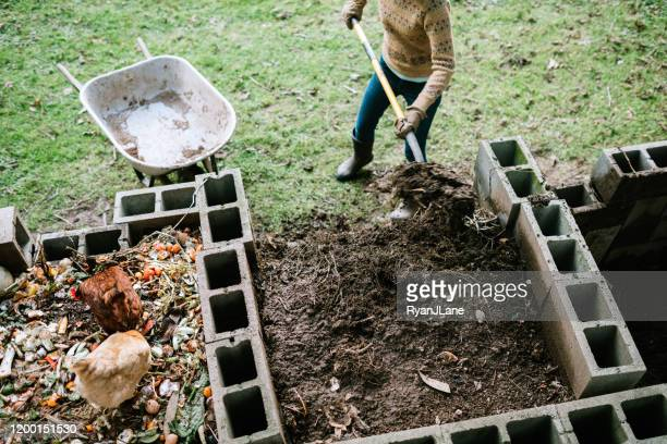 woman scooping nutrient rich compost into wheelbarrow - female mound stock pictures, royalty-free photos & images
