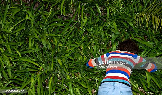 Woman searching in bushes, elevated view