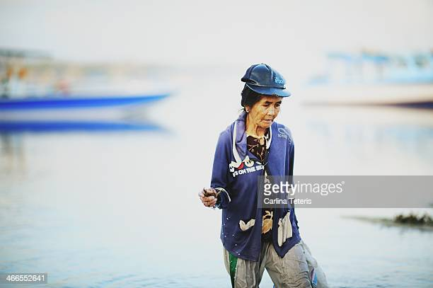 CONTENT] A woman seaweed farmer drags a bag of harvested seaweed through shallow water of low tide seaweed farms on off a tropical sandy beach...