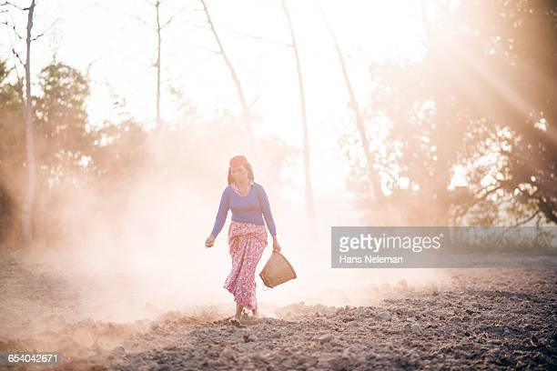 woman seeding plants in farm - chitwan stock pictures, royalty-free photos & images