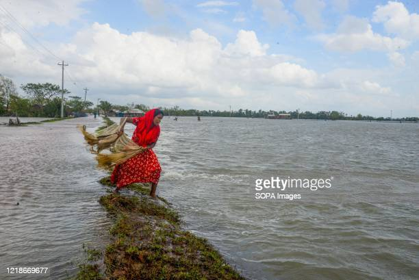 Woman seen fishing at a flooded shore after the landfall of cyclone Amphan during the aftermath. Thousands of shrimp enclosures have been washed...