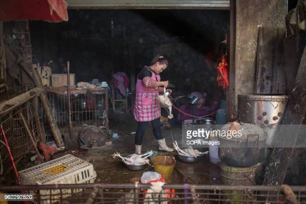 A woman seen plucking a dead chicken at a local market in Yuanyang