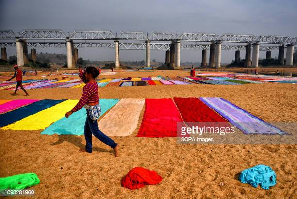 A woman seen walking through colourful clothes spread on the soil next to the river bank of Barakar in Jharkhand area The Dhobi Ghat of Kumardubi in...