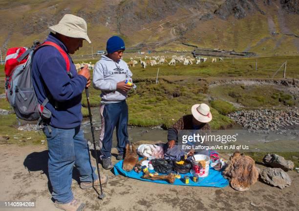 Woman selling donkeys parts as a cure, Qoyllur Riti , Ocongate Cuzco, Peru on May 28, 2013 in Ocongate Cuzco, Peru.