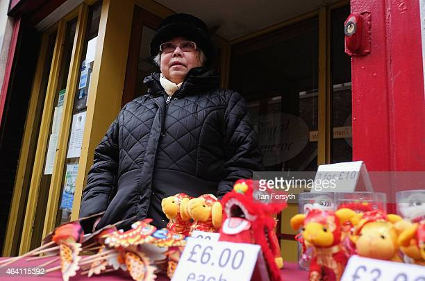A woman selling lucky dragons stands next to her stall as the Chinese community come together to welcome in the Chinese New Year on February 22 2015...