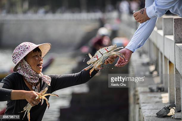 A woman sells seafood to tourists on the shore of Gulangyu Island on November 11 2014 in Xiamen China Xiamen is located on the southeast coast of...