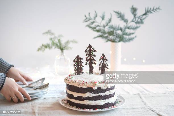 woman setting down plates for vegan christmas tree cake - hygge stock pictures, royalty-free photos & images