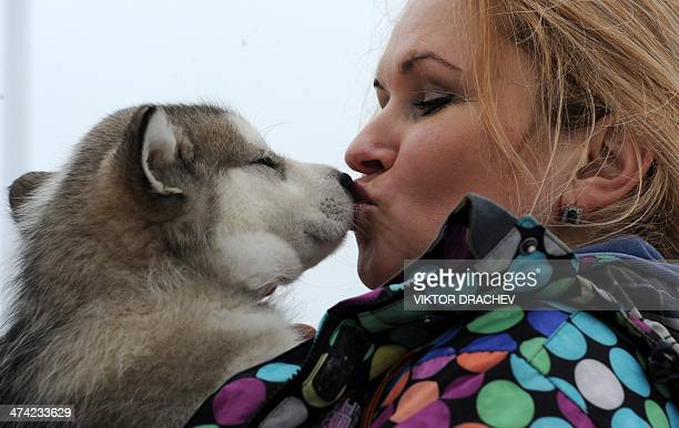 A woman shares a tender moment with her pet during international dog sled race 'Zavirukha' in the Belarus capital Minsk on February 22 2014 About 140...
