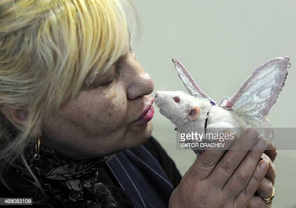 A woman shares a tender moment with her rat at a pet rodent show in Minsk on February 9 2014 AFP PHOTO / VIKTOR DRACHEV