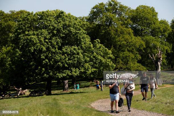A woman shelters from the sun beath an umbrella as she walks through Richmond Park in south west London on May 7 2018 Temperatures on Monday were...
