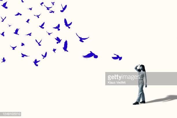 woman shielding eyes in front of flying blue birds - vogel stock-fotos und bilder