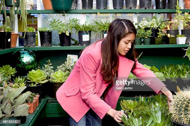 Woman shopping at a plant nursery